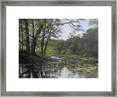 Summer Creek Reflections Framed Print by James Guentner
