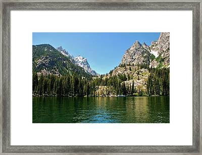 Summer Day At Jenny Lake Framed Print