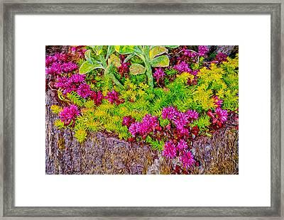 Summer Delight Framed Print by Ken Stanback