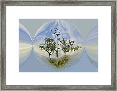 Summer Dreams Framed Print by Debra and Dave Vanderlaan