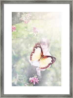 Summer Dreams Framed Print