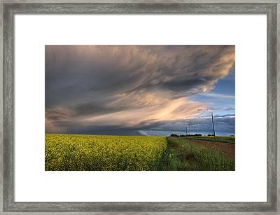 Summer Evening Storm Blowing Over Ripe Framed Print by Dan Jurak