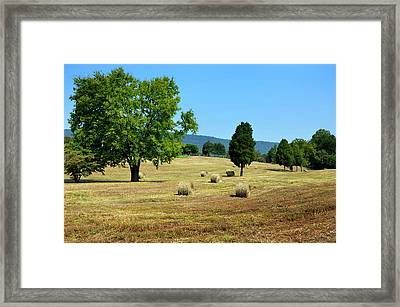 Framed Print featuring the photograph Summer Field by Paul Mashburn