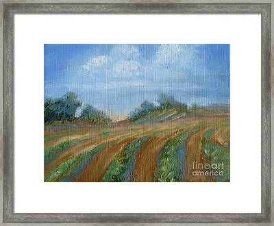 Framed Print featuring the painting Summer Fields by Sally Simon