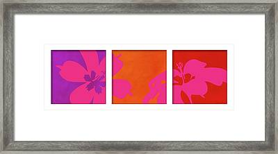 Summer Flowers Framed Print by Nomi Elboim