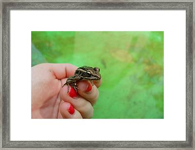 Summer Frog Framed Print by Samantha Howell