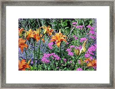 Framed Print featuring the photograph Summer Garden by Tanya  Searcy