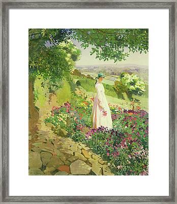 Summer Framed Print by Harold Harvey