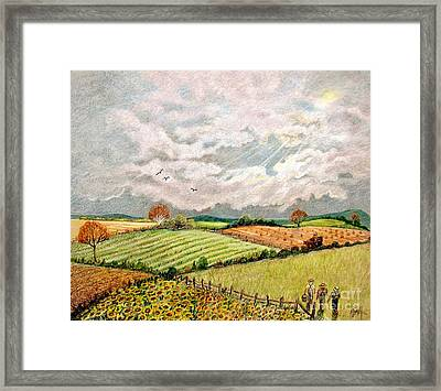 Summer Harvest Framed Print by Marilyn Smith