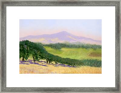 Summer Haze Framed Print by Janet Biondi