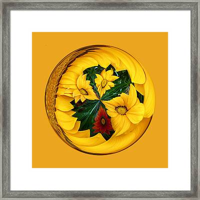 Summer In The Globe Framed Print by Robert Gipson