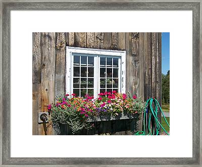 Framed Print featuring the photograph Summer On Sugar Hill by Robin Regan