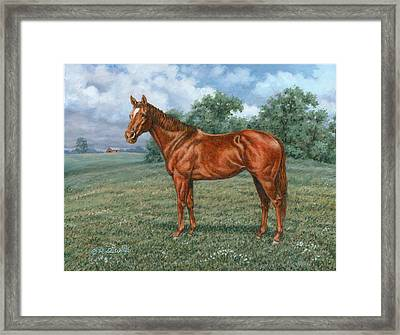 Summer Pasture Framed Print by Richard De Wolfe
