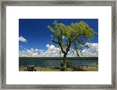 Summer Picnic Framed Print by Adam Jewell