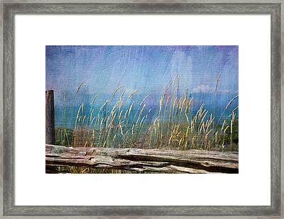 Summer Rendezvous Framed Print