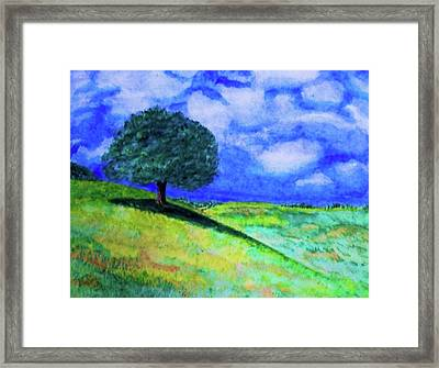 Summer Shade Framed Print by Jeanette Stewart