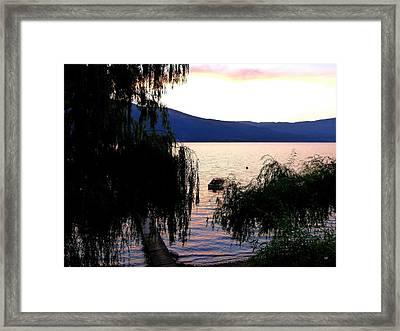 Summer Solitude Framed Print by Will Borden