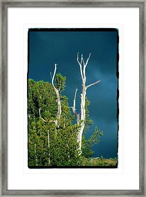Summer Storm - Tuolumne Meadows Framed Print by Noah Brooks