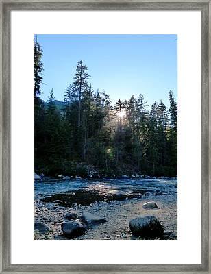 Summer Sunwink Framed Print by Christine Burdine