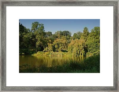 Summer Wonderful - Holmdel Park Framed Print by Angie Tirado