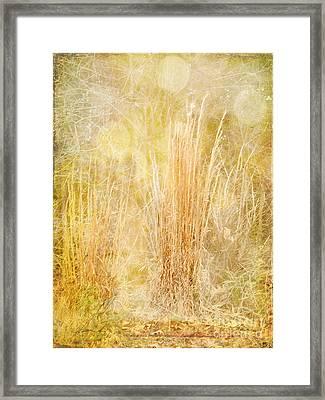 Summer's End Framed Print by Judi Bagwell