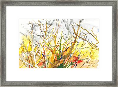 Summer's End Framed Print by Vannucci Fine Art
