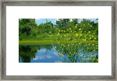 Framed Print featuring the photograph Summer's Glory by Jim Sauchyn
