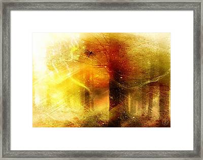 Summers Last Dragonfly Framed Print