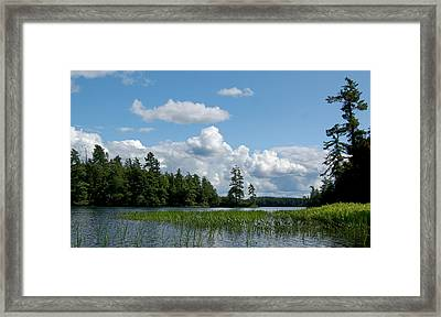 Summerscape Framed Print