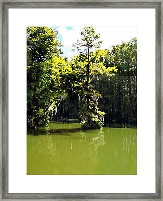 Summertime At Green Field Lake Framed Print
