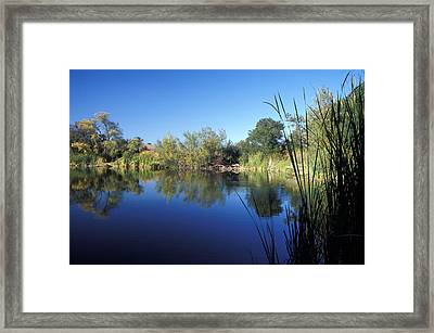 Summertime Reflections Framed Print by Kathy Yates