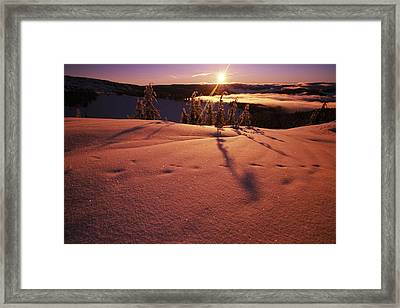 Summit In The Cascade Mountains Framed Print by Natural Selection Craig Tuttle