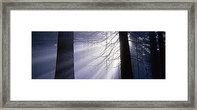 Sun Breaking Through Mists Framed Print by Ulrich Kunst And Bettina Scheidulin