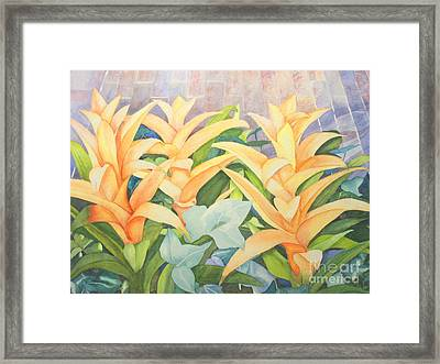 Sun Drenched Framed Print by Vikki Wicks