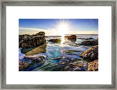 Sun Flare Framed Print by Brian Leon