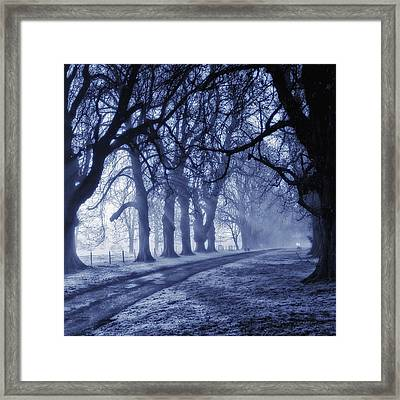Sun Ice And Mist Framed Print by Martin Crush