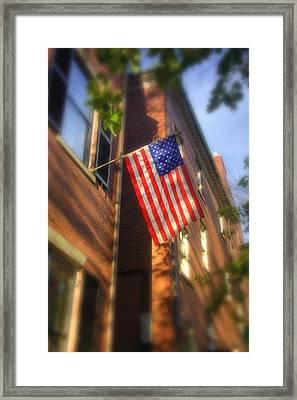 Sun Kissed Flag Framed Print by Joann Vitali