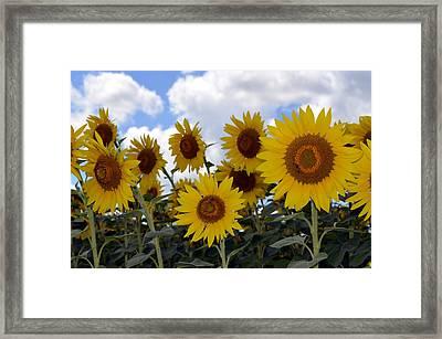 Sun Lovers Framed Print by Richard Ortolano