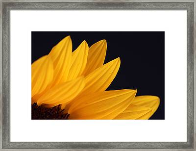Sun On Earth Framed Print by Juergen Roth