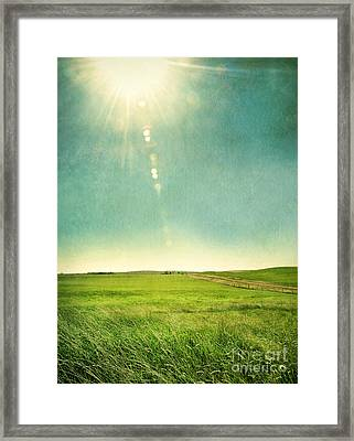Sun Over Field Framed Print by Jill Battaglia