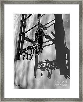 Sun Play Framed Print