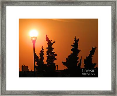 Sun Post Framed Print by Laurence Oliver