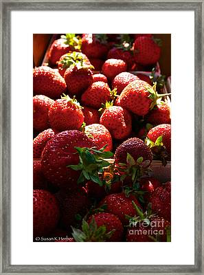 Sun Ripened Framed Print by Susan Herber