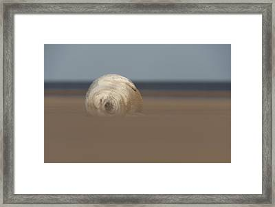 Sun Sea And Sand Framed Print