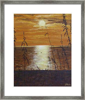 Sun Setting In Florida Framed Print by Donna Muller