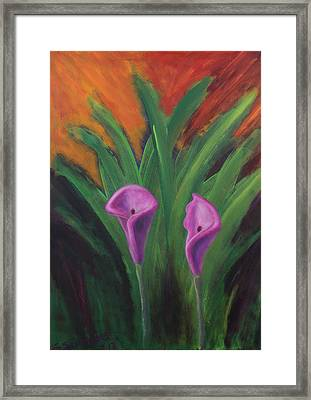 Sun Splashes Callas Framed Print