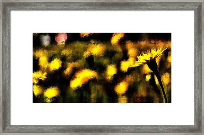 Framed Print featuring the mixed media Sun Worshiper by Terence Morrissey