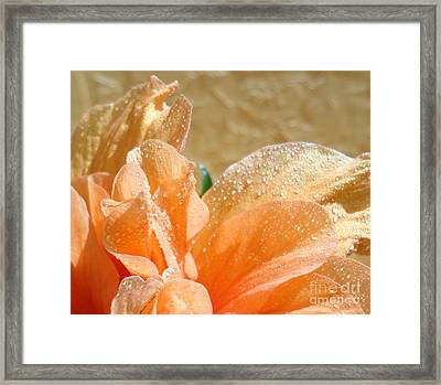Sunbathing Framed Print by Maria Bonnier-Perez