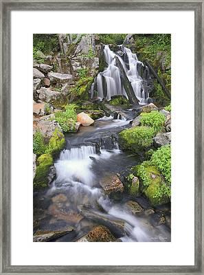 Sunbeam Creek Framed Print by Winston Rockwell