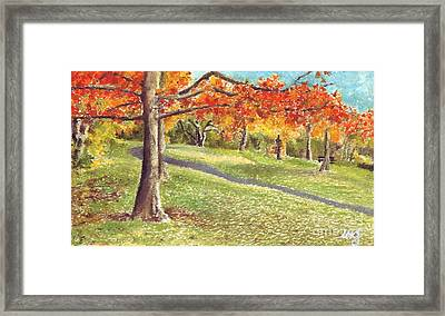 Sunday In The Park Framed Print by Iris M Gross